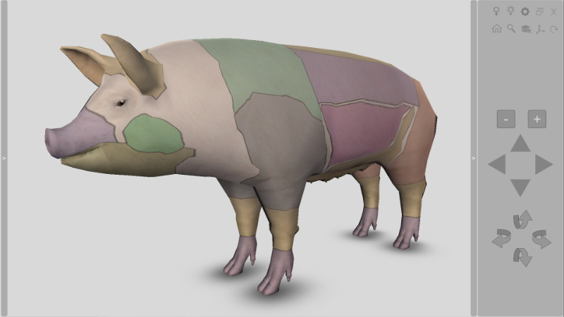 pig meat cuts